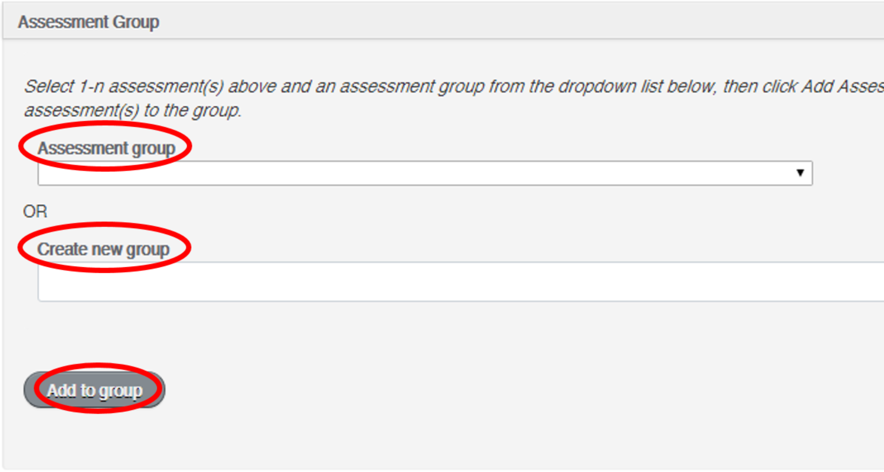 group_assessment_screen_2.PNG